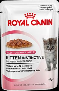Royal Canin Mini Adult | Hundefutter | Bestellen